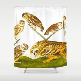 Burrowing Owl Illustration Shower Curtain