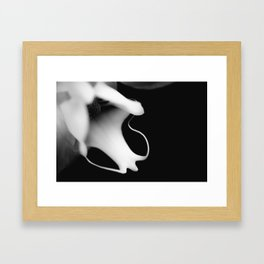 Orchid Obsession Framed Art Print
