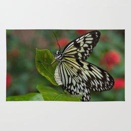 Madam Butterfly Rug