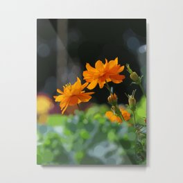 brilliant orange blossoms (abstract edit) Metal Print