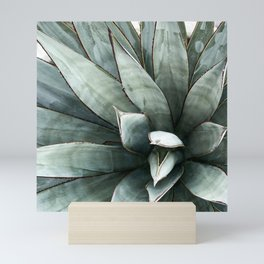 Botanical Succulents // Dusty Blue Green Desert Cactus High Quality Photograph Mini Art Print