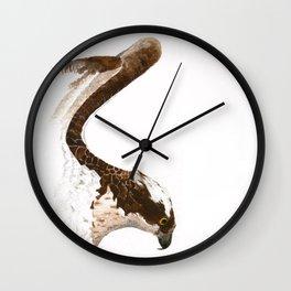 Osprey  Wall Clock