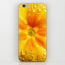 Primula iPhone Skin