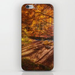 The Golden Autumn Campground (Color) iPhone Skin