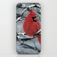 cardinal iPhone & iPod Skins featuring Cardinal by Ben Geiger
