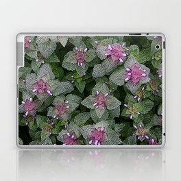 WILD SALVIA MAUVE AND GRAY GREEN Laptop & iPad Skin
