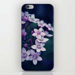 Spring Flower 11 iPhone Skin
