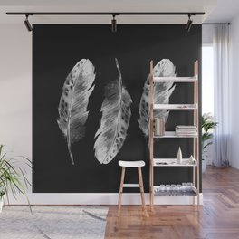 Three feathers on black background Wall Mural