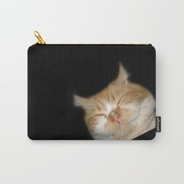 Funny Sleeping Cat Carry-All Pouch