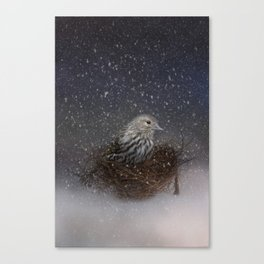 Keeping Warm In My Nest Canvas Print