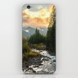 The Sandy River I iPhone Skin