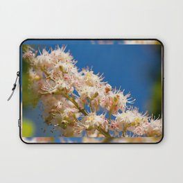 Macro of blooming Aesculus Laptop Sleeve