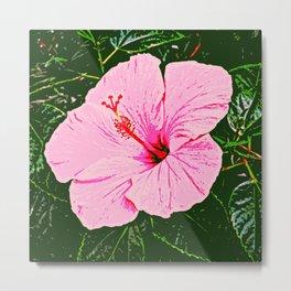 Hibiscus Duo - Pink Flowers Metal Print