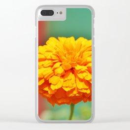 Yellow Orange Zinnia Clear iPhone Case