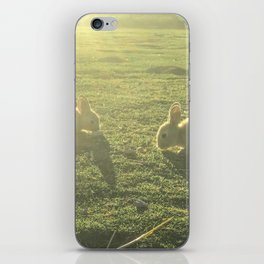 Bunny // Cute Nursery Photograph Adorable Baby Bunnies in the Field iPhone Skin
