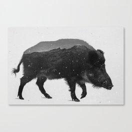 Wild Boar (B&W) Canvas Print