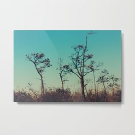 Chesapeake Bay Metal Print