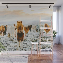Wild Horses / Iceland Wall Mural