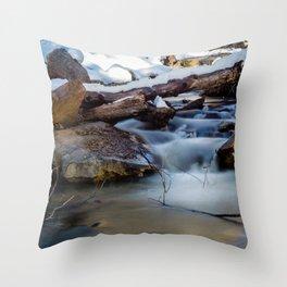 Winter Flow Throw Pillow