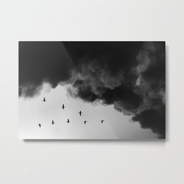 Bird migration Metal Print