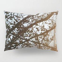 Light Leak on a Berry Tree Pillow Sham
