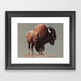 American Bison painting Framed Art Print