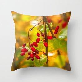Autumn drops Throw Pillow