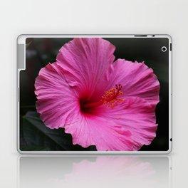 Hibiscus at Eden Project Laptop & iPad Skin