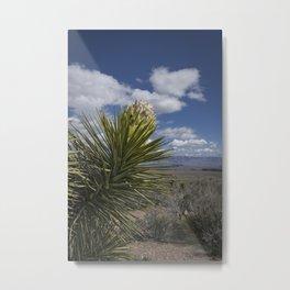 6599 - Desert Spring Blossom  Metal Print