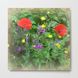 Summer Meadow Metal Print