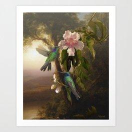 Sparkling Violetear Hummingbirds Art Print
