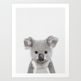 Koala Print, Australian Baby Animal, Nursery Wall Art, Peekaboo Animals, Koala Art Print