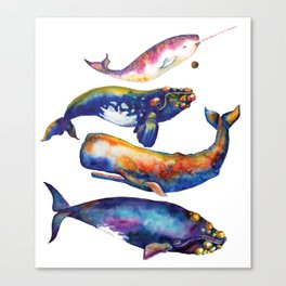 Whale Pyramid #4 - Watercolor Whales Canvas Print