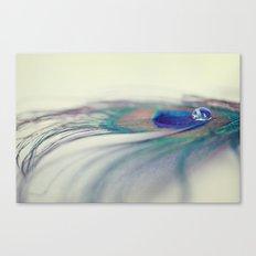 Peacock Drop Canvas Print