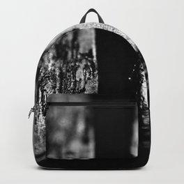 Beneath the Edge Backpack