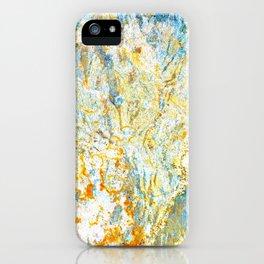 longitude iPhone Case