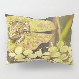 frogger... Pillow Sham