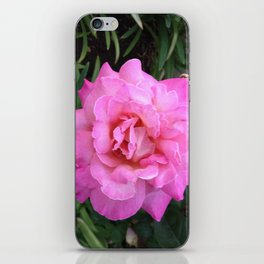 Renegade Roses II iPhone Skin