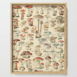 Trippy Vintage Mushroom Chart // Champignons by Adolphe Millot XL 19th Century Science Artwork Serving Tray