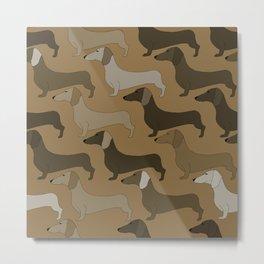 Dachshund Dogs Metal Print