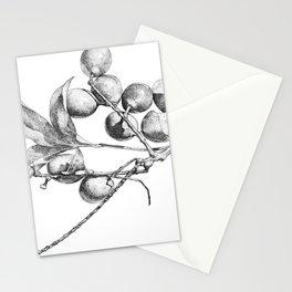 Mamoncillo Fruit Stationery Cards