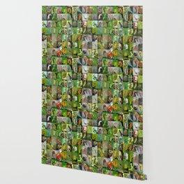 Caterpillar Montage Wallpaper