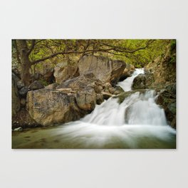 Waterfall in Ourika valley Canvas Print