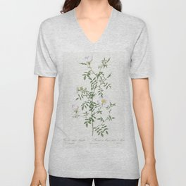 Semi-Double Sweet Briar also known as Rusty Rose with Semi-Double Flowers (Rosa rubiginosa flore sem Unisex V-Neck