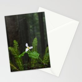 White Flowered Trillium Ovatum on the Edge of a Ledge in Lush Green Oregon Forest Stationery Cards