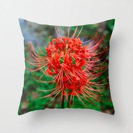Charleston Hurricane Lily VIII Throw Pillow