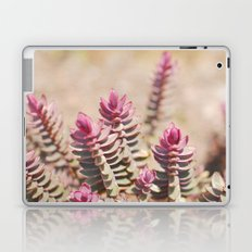 Hebe Laptop & iPad Skin