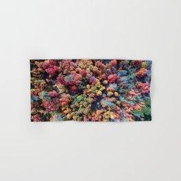FOREST - AUTUMN - COLORS - PHOTOGRAPHY - NATURE Hand & Bath Towel