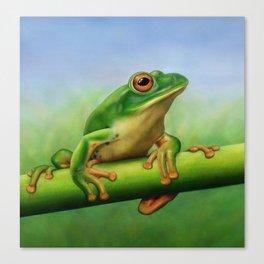 Moltrecht's Green Treefrog Canvas Print