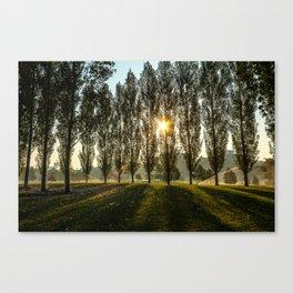 Penn State Arboretum Canvas Print